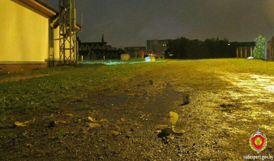 В Минске убили 21-летнюю девушку. Убийцу, который тащил тело к каналу, спугнул таксист