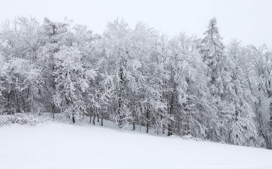 Синоптики из США прогнозируют в Беларуси холодную и снежную зиму