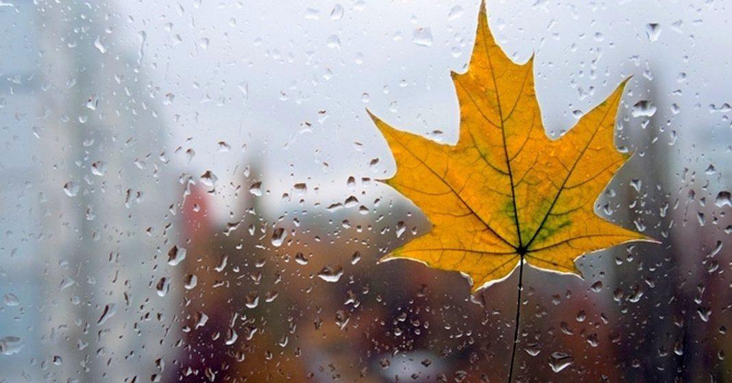 Метеорологи рассказали, каким будет конец октября в Барановичах