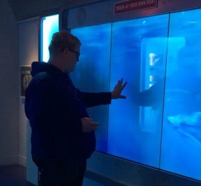В сети набирает популярность видео, как посетитель музея до полусмерти испугался необычного экспоната