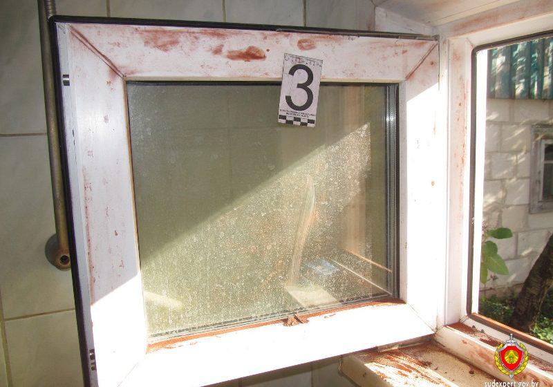 В Столинском районе подростки, не вскрыв сейф, украли дорогой алкоголь
