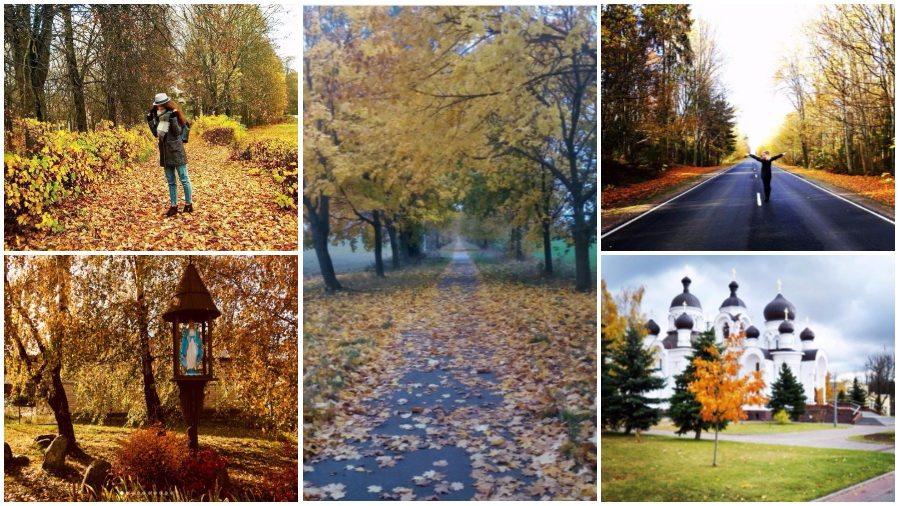 Красота осенних Барановичей: подборка фотографий из соцсетей