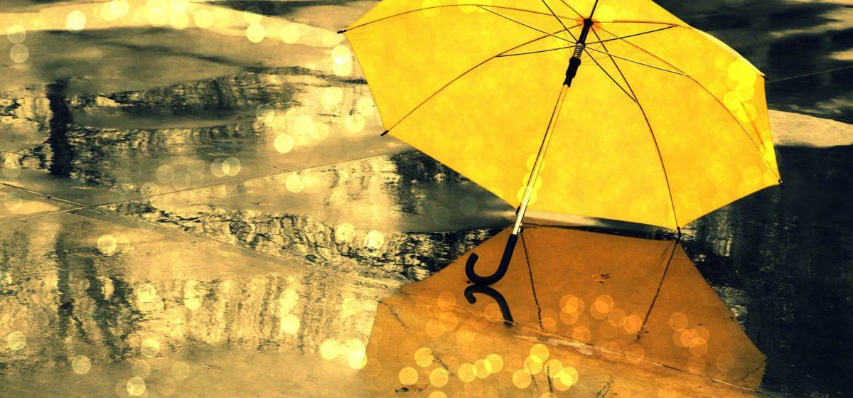 Начало недели в Барановичах будет ветреным и дождливым