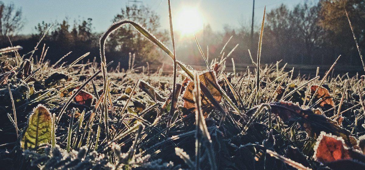 Погода в Барановичах: дождь, снег и заморозки