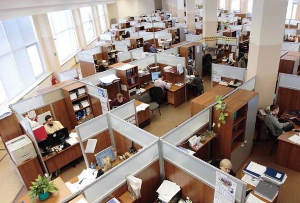 Компания ESET выяснила, что 25% белорусских сотрудников хотя бы раз мстили экс-работодателям