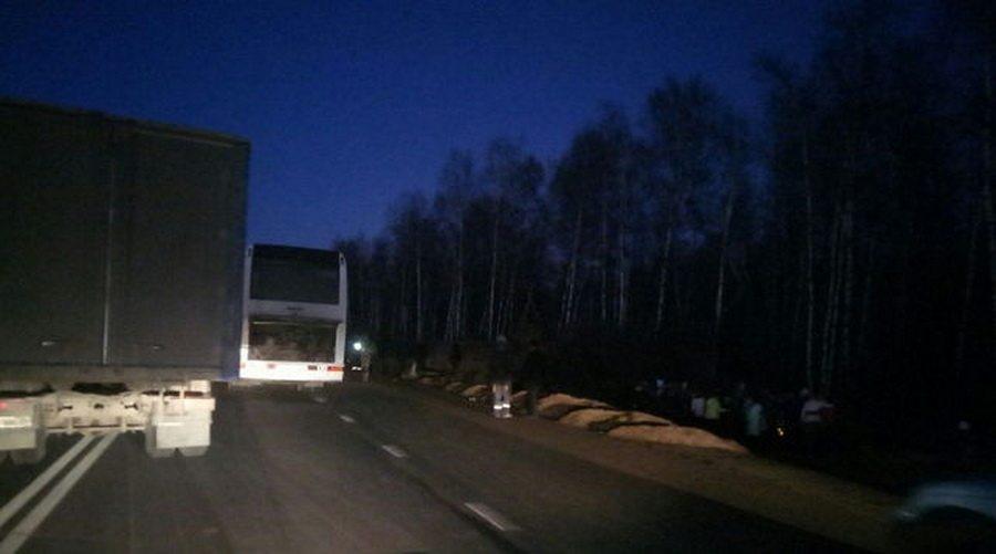 Под Ярославлем школьный автобус врезался в полуприцеп, пострадали 16 детей