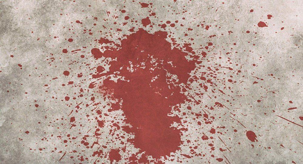 Жестокое убийство в Слуцком районе: женщине нанесли не менее 100 ударов руками, ногами, металлическим совком и деревянной палкой