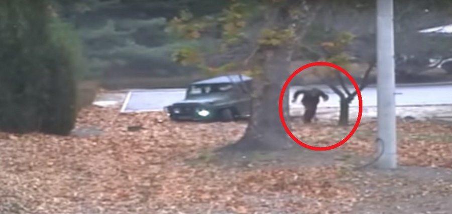 В сети опубликовали видео, как солдат из КНДР прорывался через границу в Южную Корею