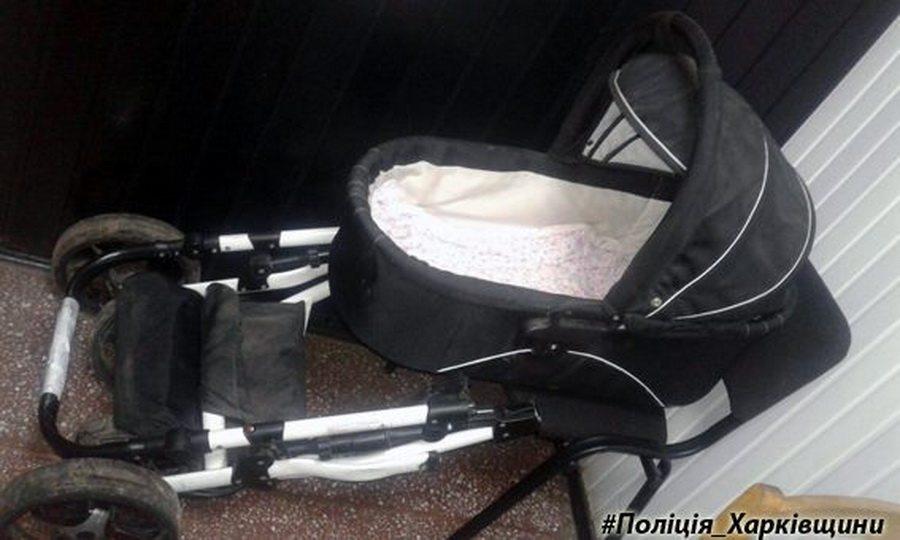В Украине бродячая кошка задушила трехмесячного ребенка в коляске