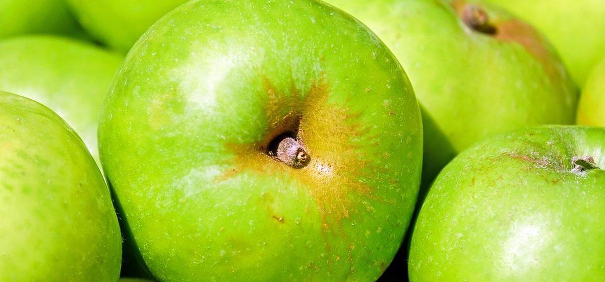 Лифт, яблоки и вода: что больше всего подорожало в Брестской области за год