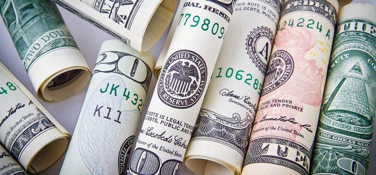 В Лунинце 11-летний ребенок за два года украл у отца более пяти тысяч долларов