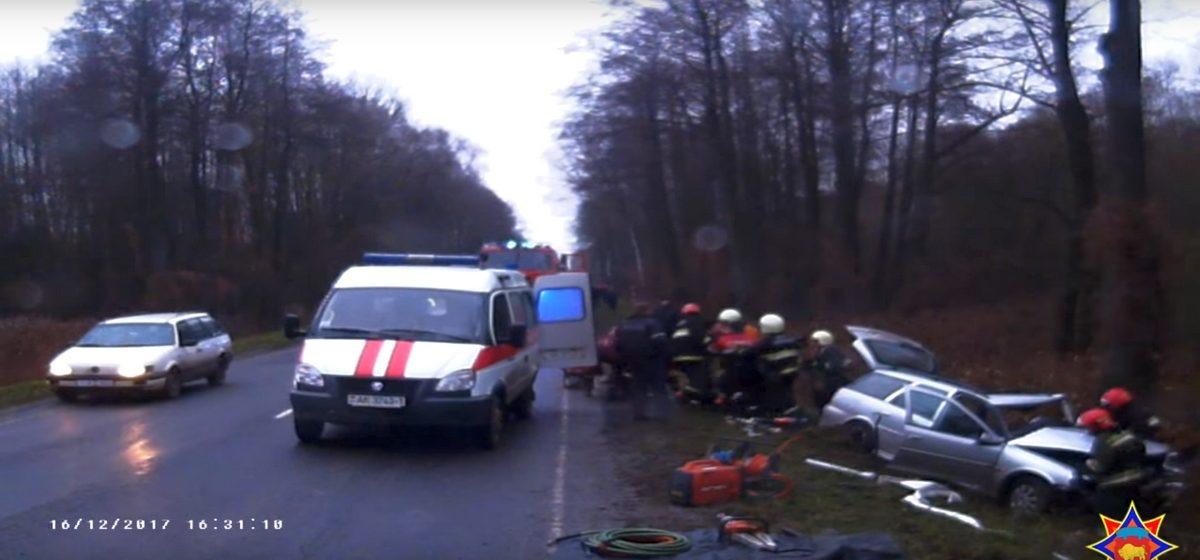 Под Жабинкой Opel вылетел с дороги и врезался в дерево. Водителя из салона пришлось вырезать спасателям (видео)