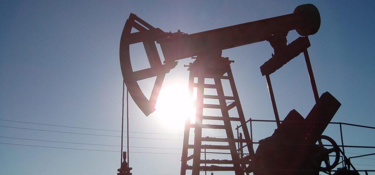 В Беларуси открыли два новых месторождения нефти