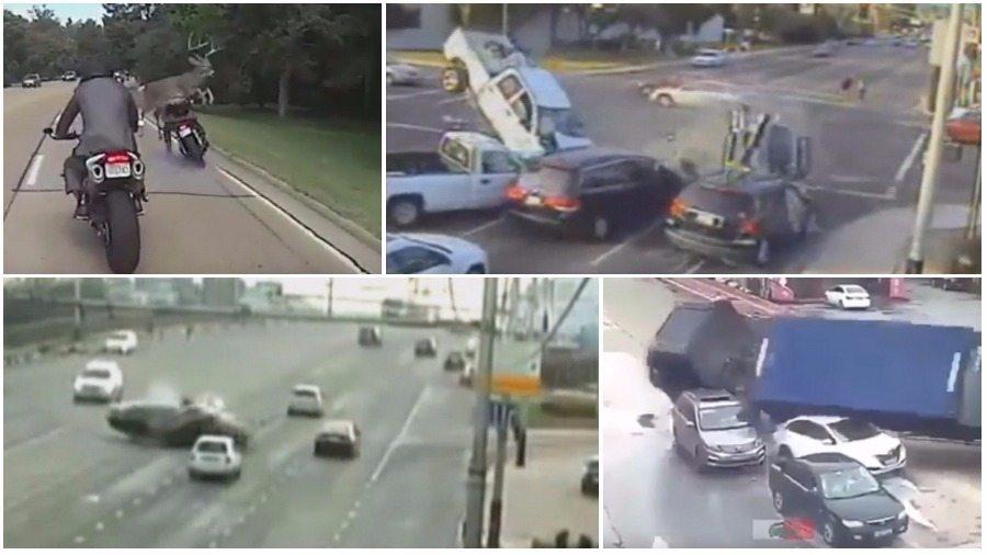 ТОП-7 ужасных аварий за неделю: пикап-убийца, олень на дороге, грузовик раздавил несколько машин