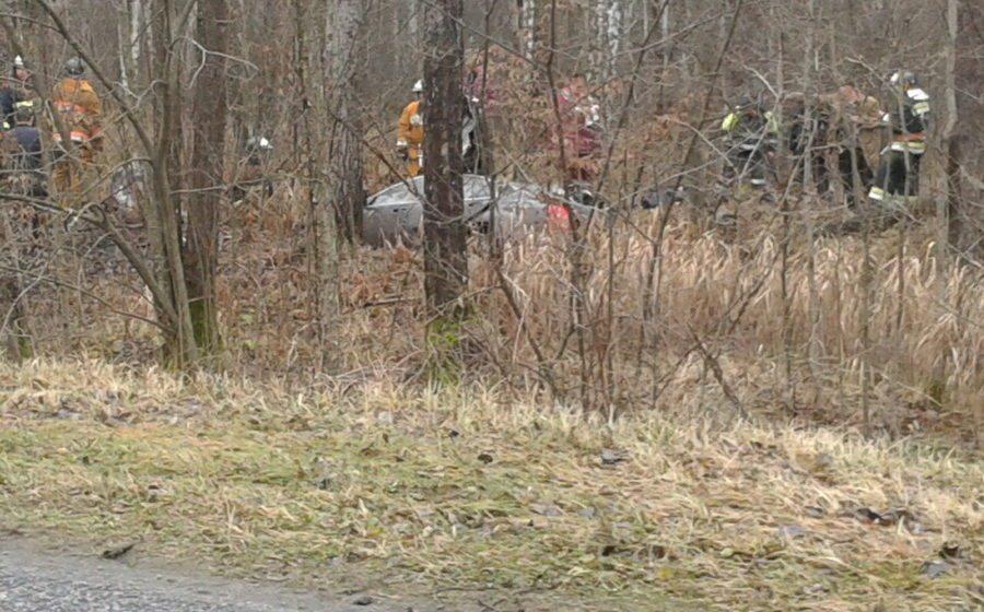 В Житковичском районе Mercedes расплющило о дерево – погибли трое молодых парней