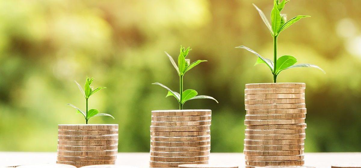 Что ждет белорусскую экономику в 2018 году – прогнозы экспертов