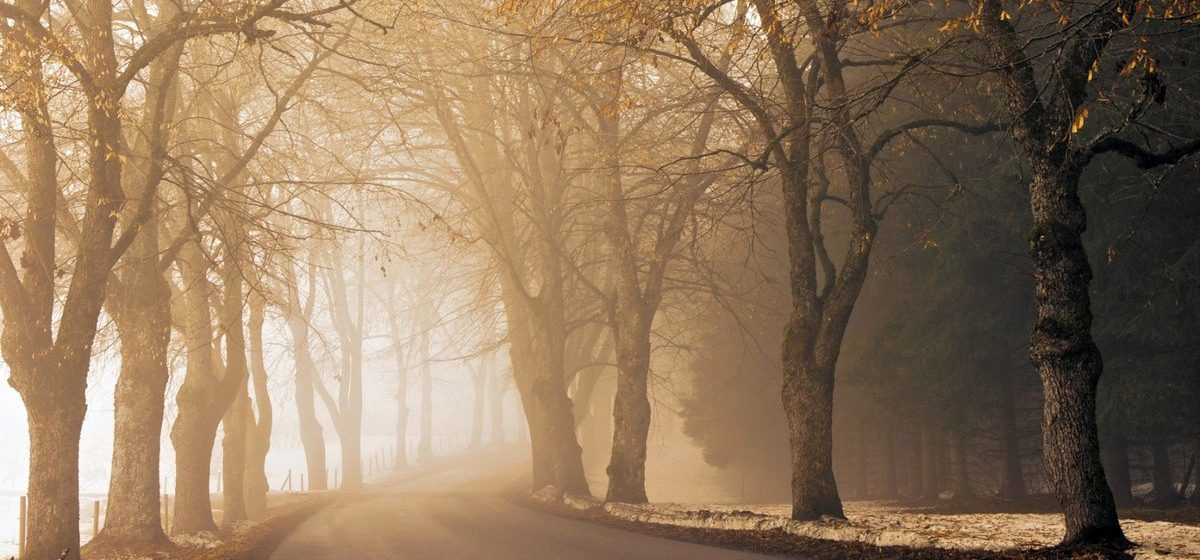 Метеорологи рассказали, как надолго в Барановичах выпал снег
