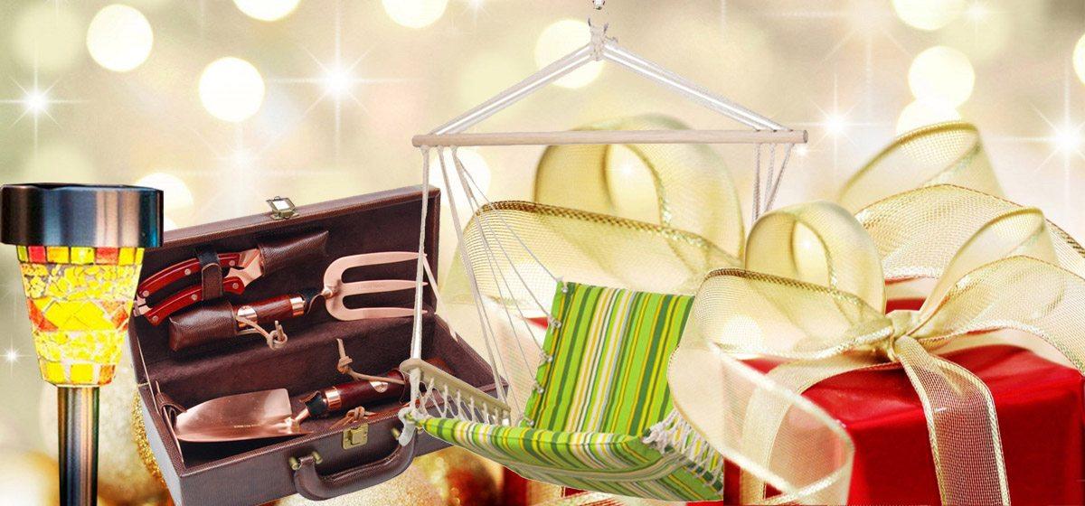 Шесть новогодних подарков для дачника*