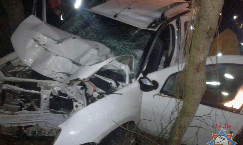 Под Пинском Renault вылетел с дороги в кювет, водителя и пассажира из салона пришлось вырезать спасателям