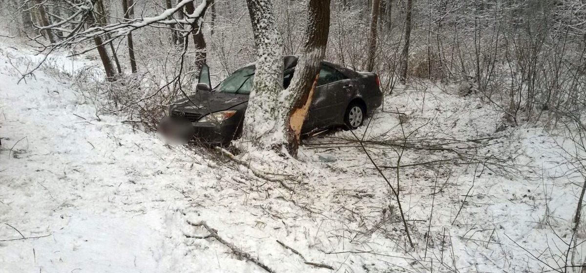 «Тойоту» после обгона занесло, и, вылетев с трассы, она врезалась в дерево, водитель погиб