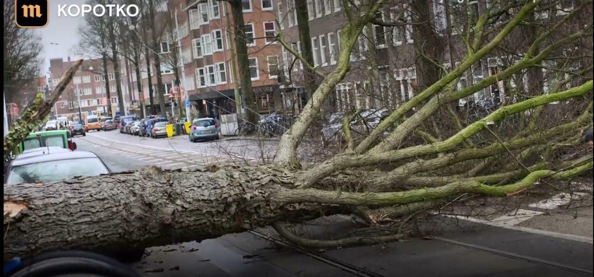 В Европе сильный ветер срывает крыши домов и сбивает людей с ног. Есть погибшие (видео)