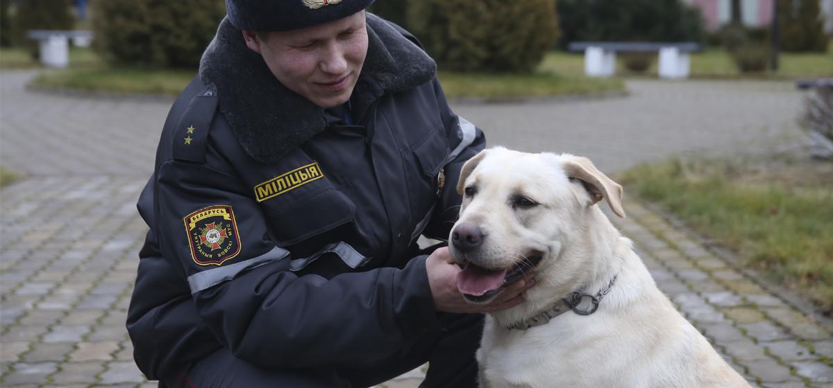 Барановичский кинолог рассказал, как тренирует собак искать взрывчатку