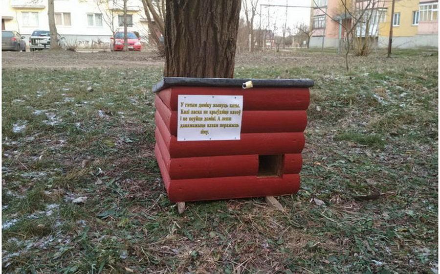 В Кобрине для бездомных котов установили теплые домики