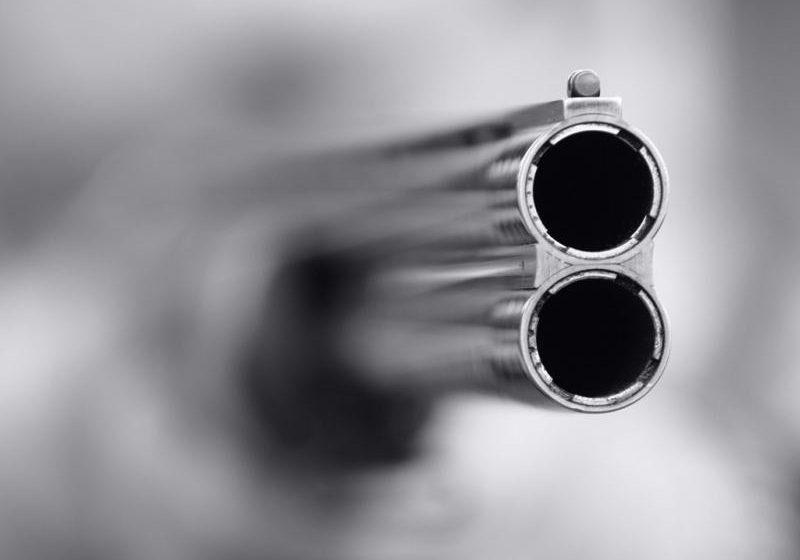 Под Могилевом руководитель агрокомбината взял ружье и начал расстреливать собак