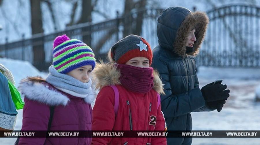 Министерство образования сообщило, при какой температуре можно приостановить занятия в школах