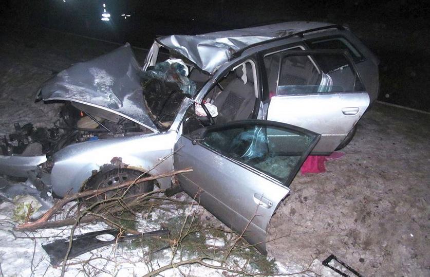 Под Мостами Audi сбила лося, погибла 18-летняя девушка