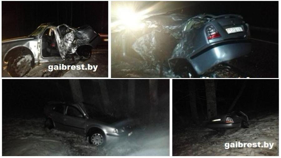 В Ивацевичском районе бесправник вылетел в кювет и столкнулся с деревом
