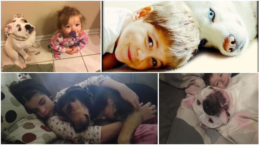Подборка фотографий маленьких детей со своими четвероногими друзьями