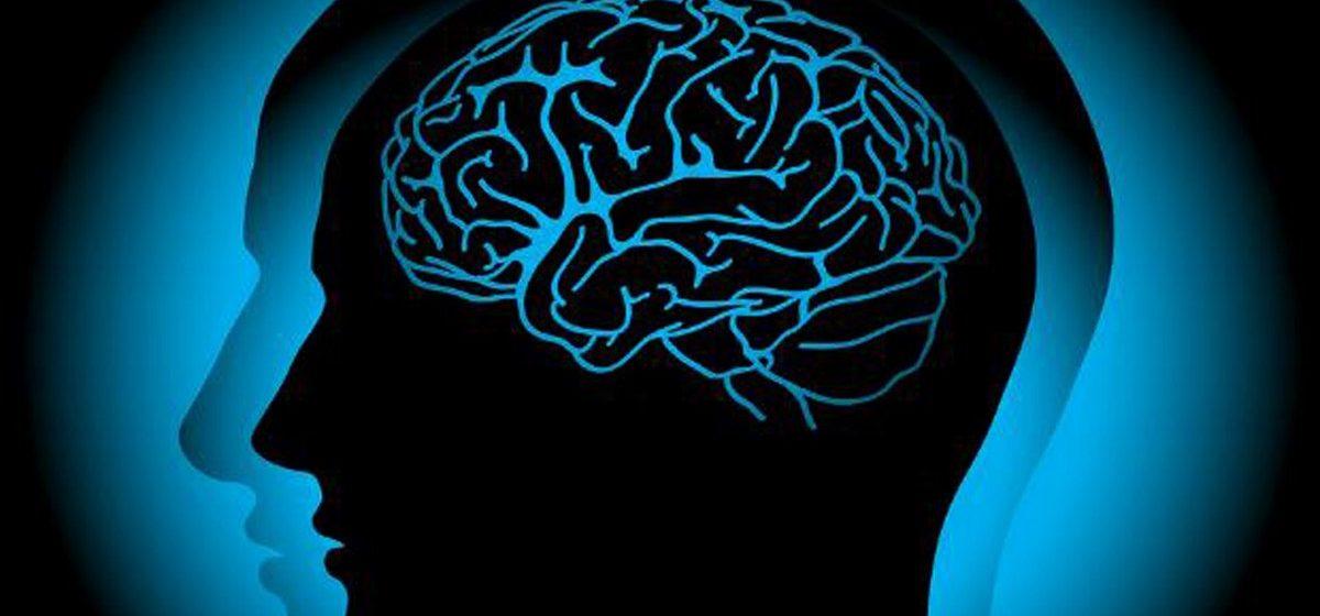 Шесть наиболее распространенных мифов о человеческом мозге
