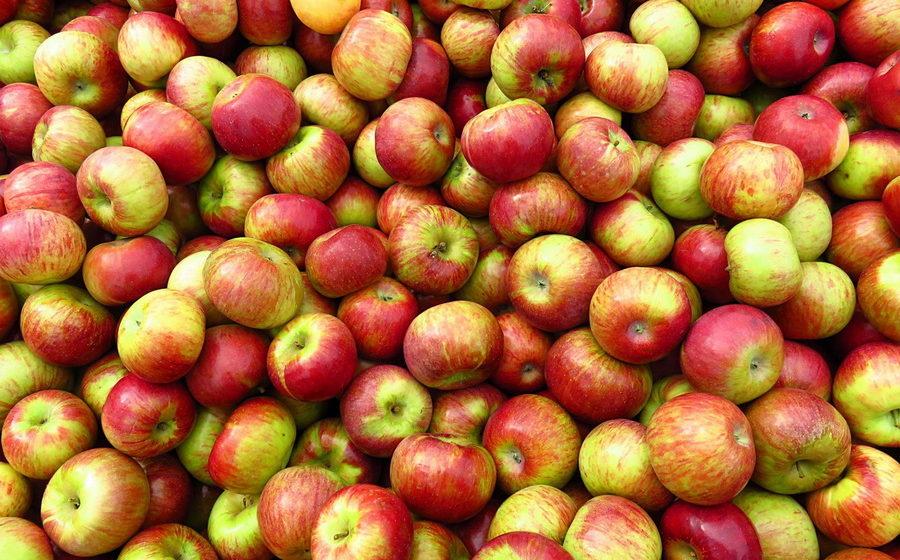 Россельхознадзор запретил ввозить яблоки с 31 предприятия из Беларуси