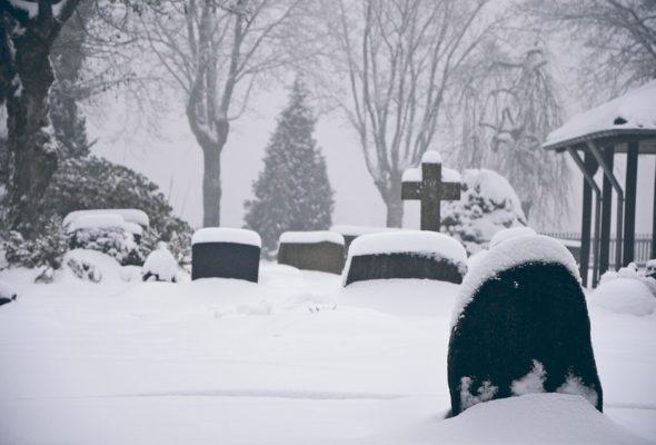 В Беларуси создали сайт, который помогает находить захоронения с точностью до 10 см