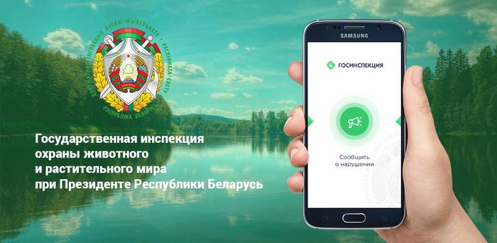 В Беларуси появилось приложение для сообщений о браконьерах