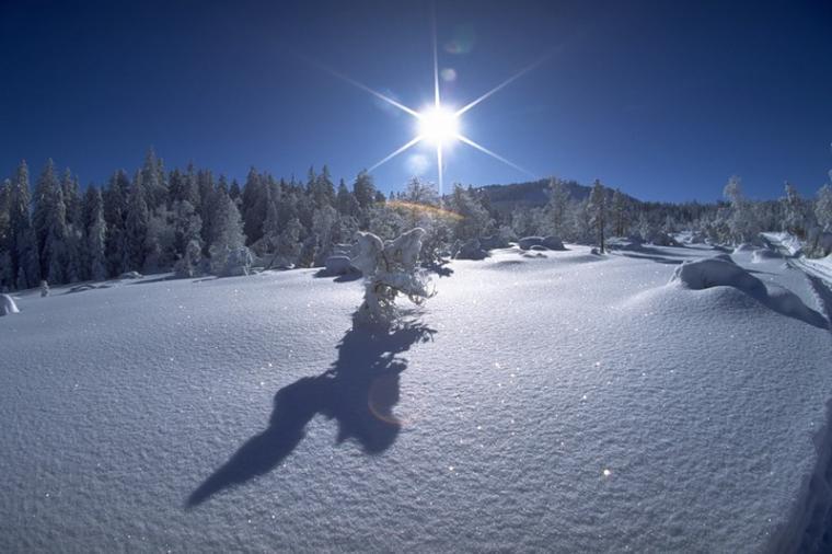 Какая погода будет в Барановичах на 23 февраля