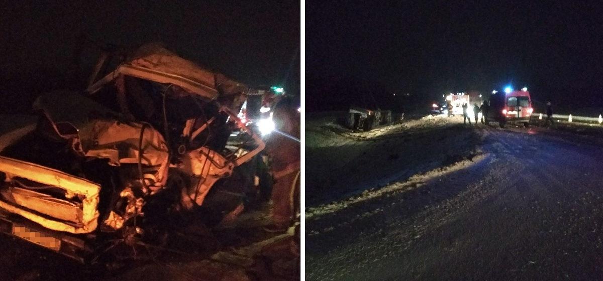 Под Витебском молоковоз выехал на встречку и врезался в фуру, водитель погиб
