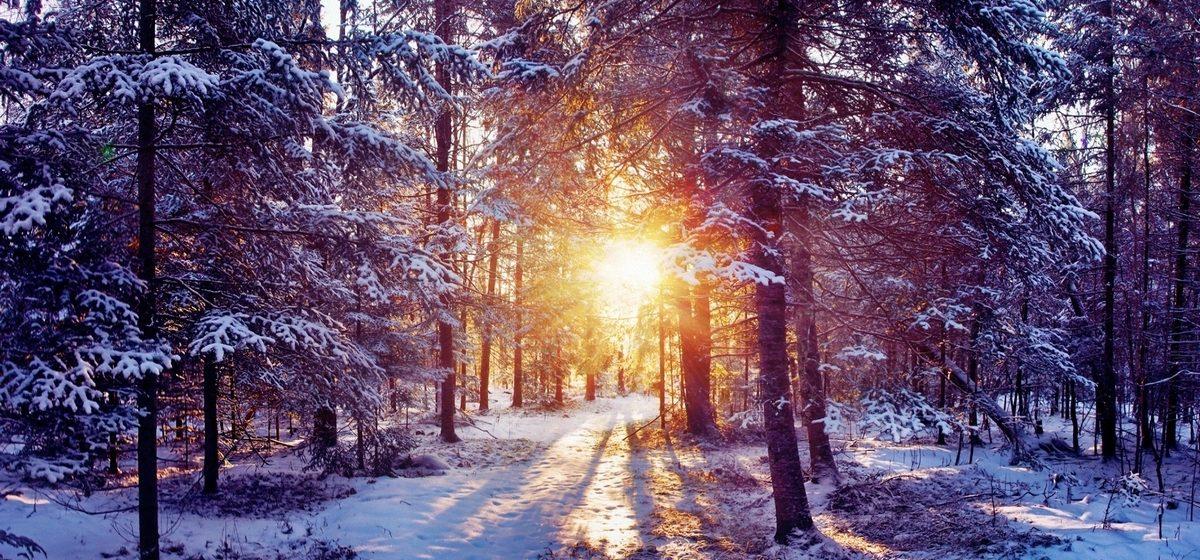 Специалисты рассказали, какая погода будет в Барановичах в выходные, 3–4 февраля