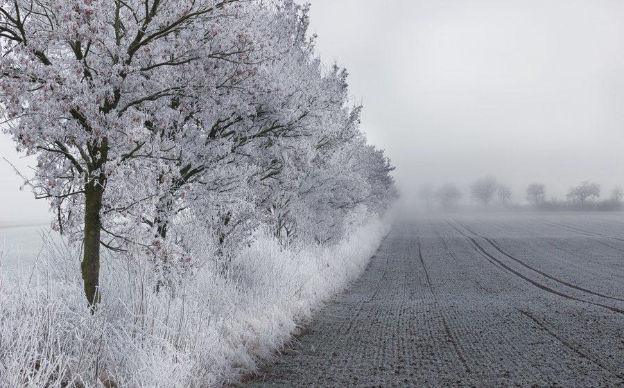 В Беларуси 24 февраля из-за сильных морозов объявлен оранжевый уровень опасности