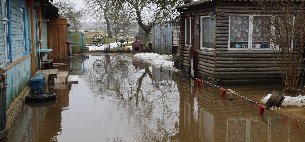 Жители затопленной деревни в Барановичском районе: «Козы в воде стоят, собака во дворе плавает»