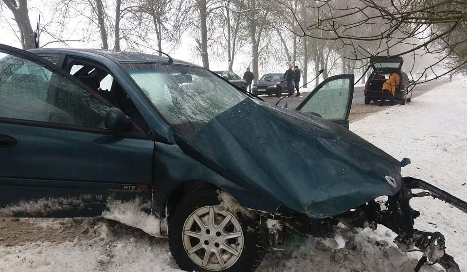 Фотофакт. В Барановичском районе «Рено» врезалось в дерево – двое пострадавших