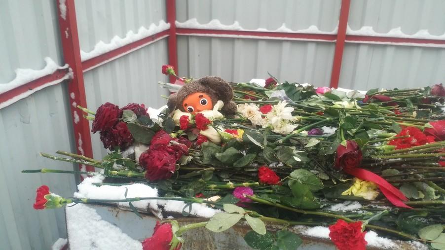 Фотофакт. Цветы и игрушки, которые принесли к российскому посольству белорусы, выбросили на помойку?