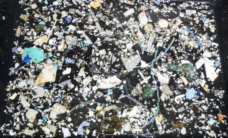 Площадь «мусорного острова», который образовался в Тихом океане, в 8 раз превысила площадь Беларуси