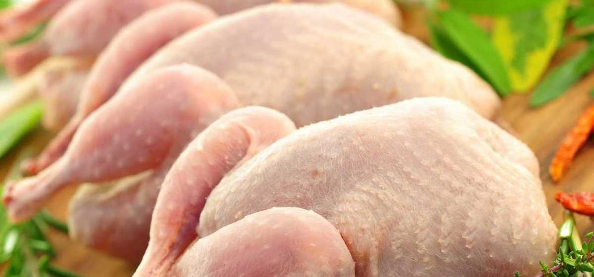 «Бизнесмена» из Бобруйска подозревают в хищении 13 тонн курятины
