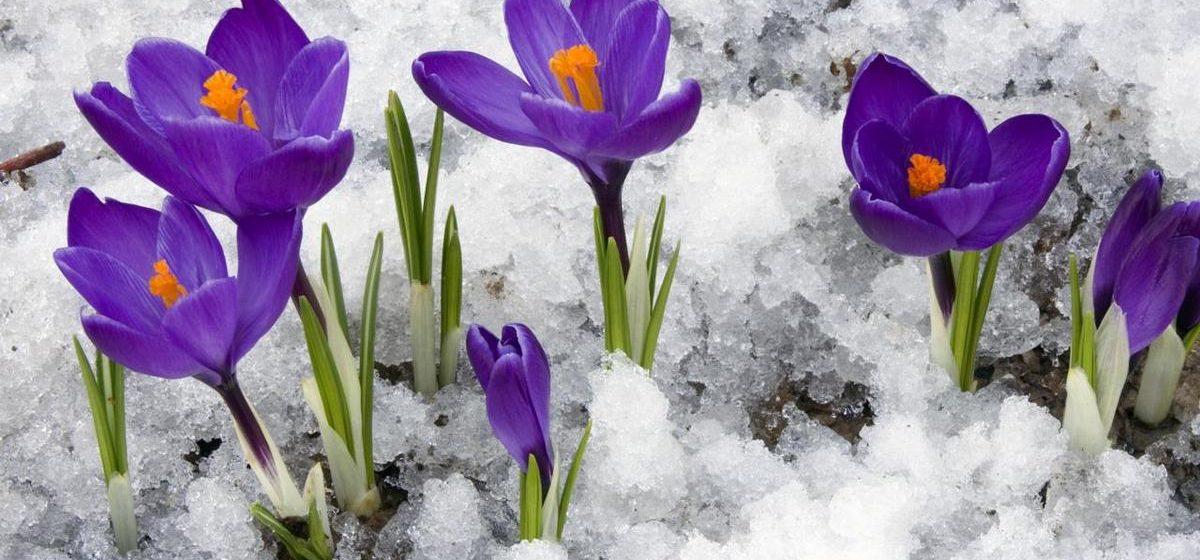 Метеорологи рассказали о погоде в Барановичах на ближайшие дни