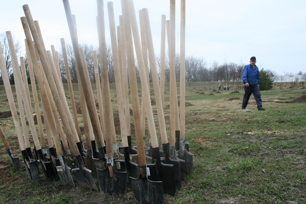 В Барановичах с 19 марта по 28 апреля проводится городской месячник по благоустройству и санитарной очистке