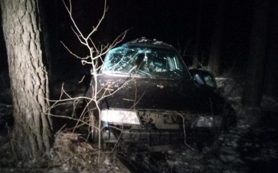 В Любанском районе из-за внезапно выбежавшей на дорогу собаки произошло смертельное ДТП