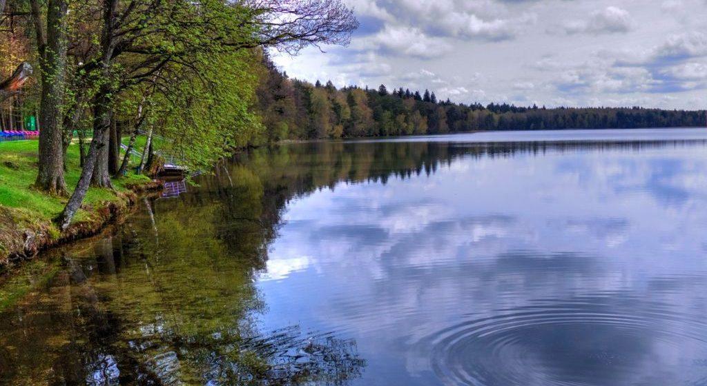 В украинских школах учат, что Адам Мицкевич посвятил поэму «Свитязь» волынскому озеру