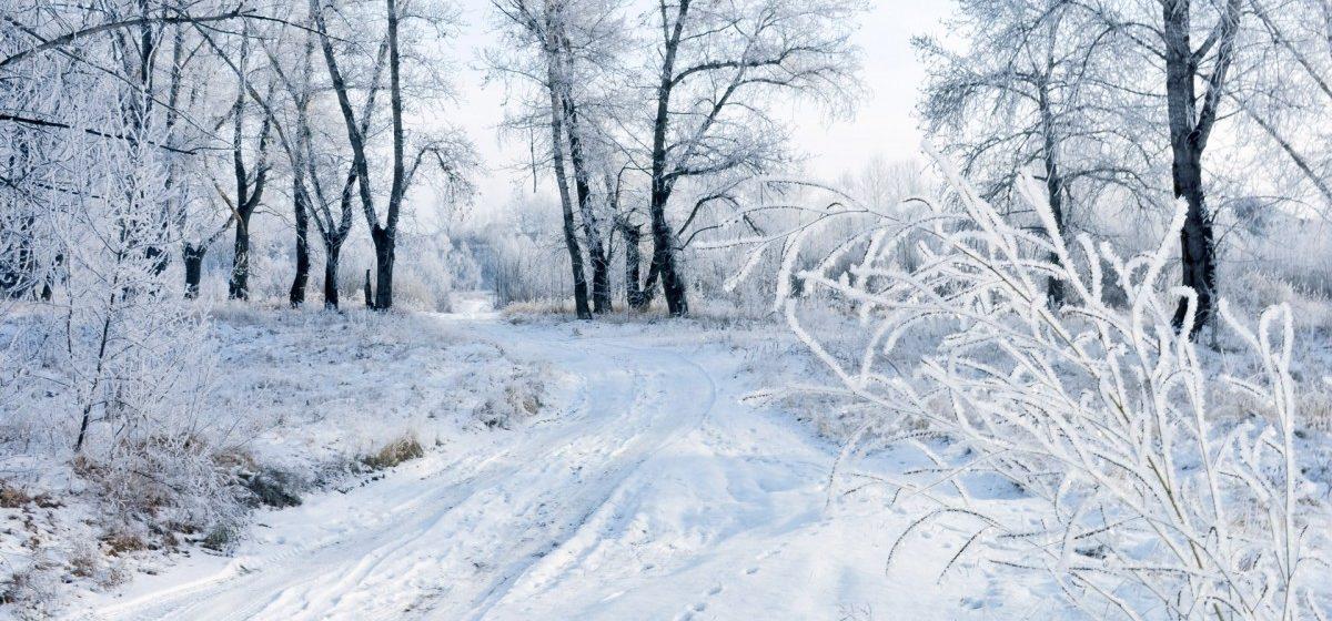 Метеорологи рассказали, отступят ли морозы в выходные в Барановичах